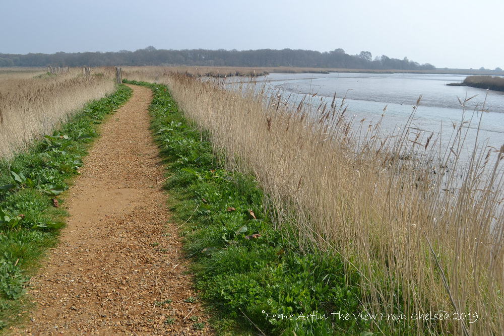 Snape Marshes path