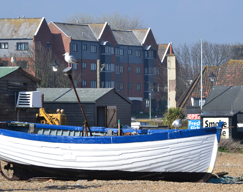 Blue and white rowing boat on Aldeburgh Beach