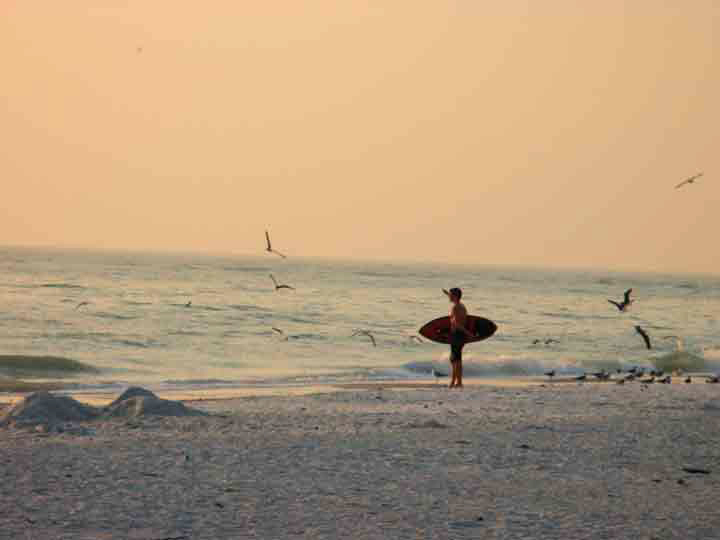 boy with boogie board surrounded by flying gulls against an orange sunset sky