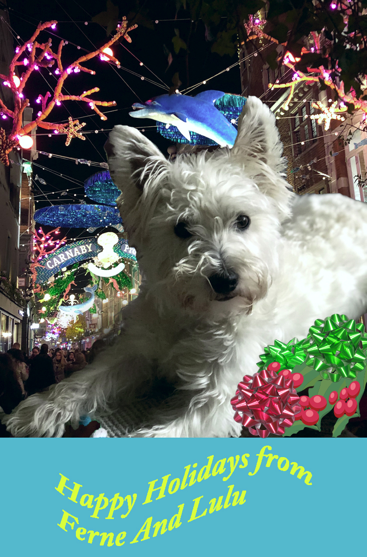 Lulu the Westie at Christmas
