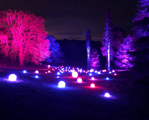 Winter lights in a woodland, winter light trail, national trust, waddesdon manor, holiday illluminations, mysterious light trail, christmas 2019