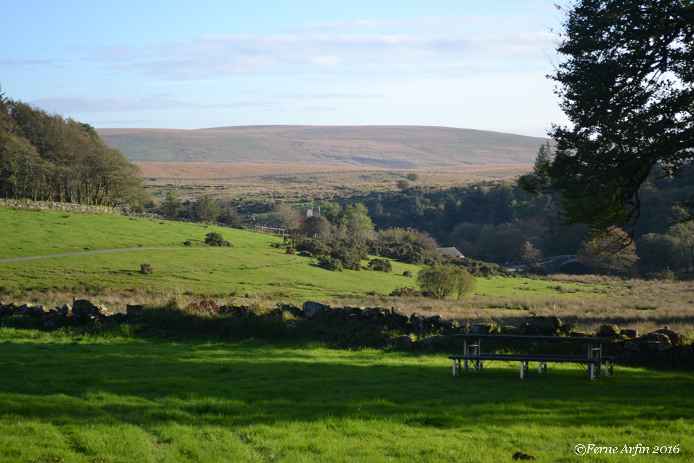#Dartmoor #view-from-prince-hall #england #devon #moor
