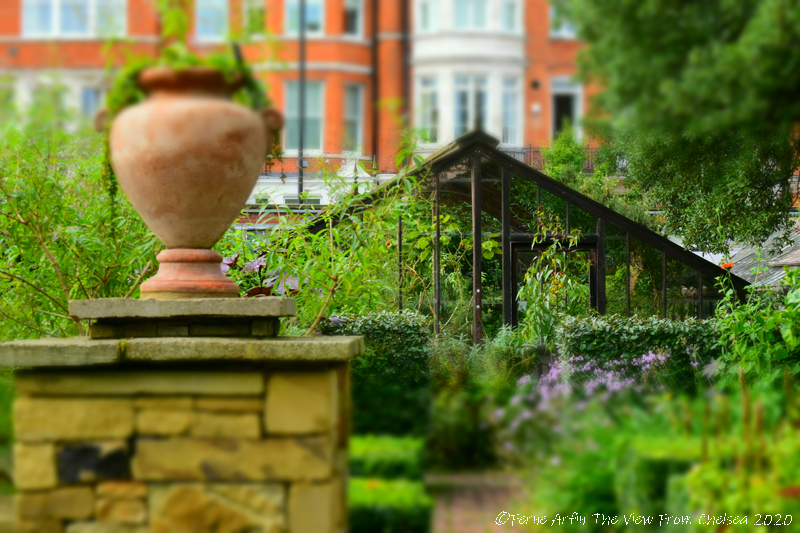 Glasshouses at the Chelsea Physic Garden