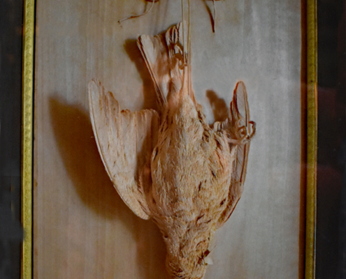 dead bird, pearwood carving, Jean Demontreuil,Burghley House,Marquetry Room