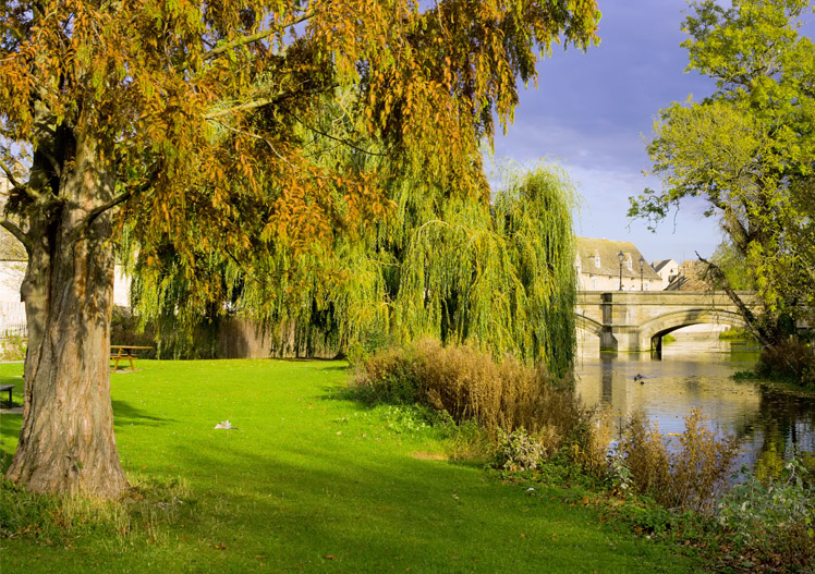 Stamford, lincolnshire, willows, river, welland, england,midlands